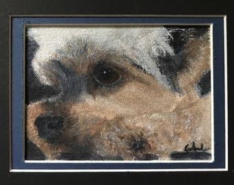 Yorkshire Terrier (Yorkie) Acrylic Painting