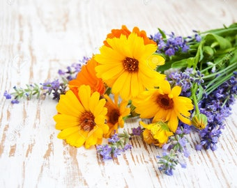Organic Calendula PLUS Lavender Herbal Oil! / Gentle Love for Your Skin, Lips, and Hair!