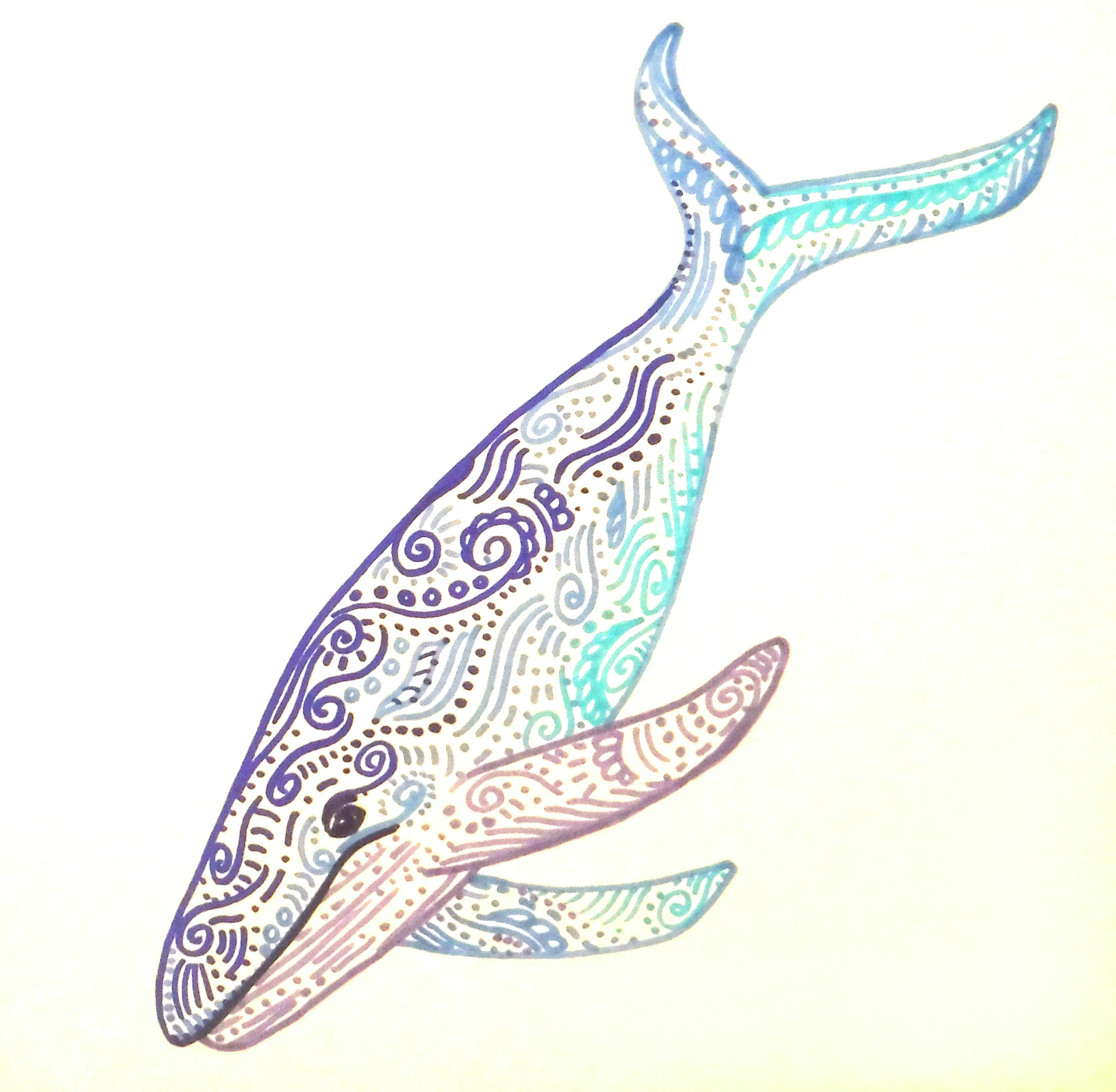 Uncategorized Blue Whale Drawing colorful whale art drawing nursery wall decor kids