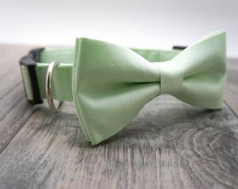 Mint Dog Bow Tie, Wedding Dog Collar and Bow Tie in Mint, Wedding Dog Collar, Wedding Dog Bow Tie, Dog Collar, Mint Green Dog Collar, #dog