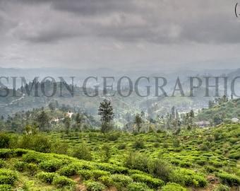 Canvas Print Photograph - Ella, Sri Lanka