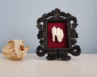 Ram's Tooth - In a ornate gothic frame.