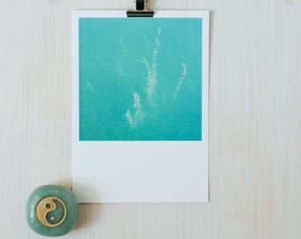 postcard,polaroid,lake,plant,reflection,underwater,turquoise,underwaterlife,water,green
