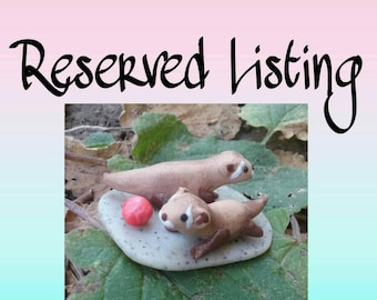Reserved ferrets