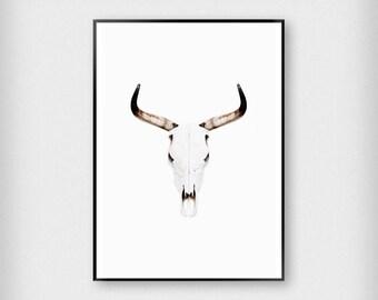 Buffalo Print | Nature | Black - White - Brown | Skull - Photography - Poster