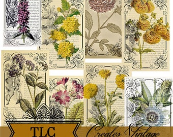 Vintage Botanical Collage Journal Cards Printable Ephemera