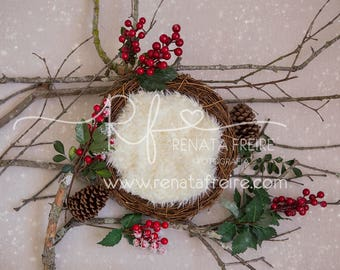 Christmas collection digital Newborn Backdrop/Background Prop
