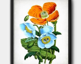 Orange & blue flowers · Instant Download · Vintage · Wall · Printable · Digital File #119