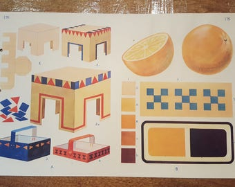 Vintage Mid-century Double-Sided Colour Illustration School Chart Print No.176
