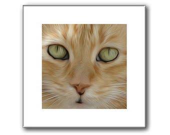 Orange Tabby Cat - Tabby Cat Print - Orange Cat - 10 x 10