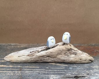 Driftwood with sitting caricature Seagulls