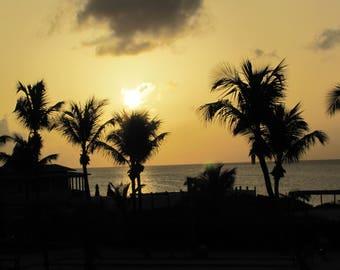 Sunset Palm Photography Sunset Bahamas Beach Sunset Tropical Sunset Orange Sunset Wall Art Photography by Julie Denis