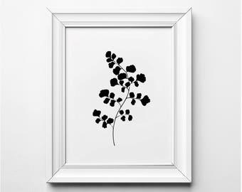 Maidenhair Illustration, Minimalist Botanical Wall Art, Modern Art Print, Black and White Maidenhair Art, Printable Art, Modern Art Print