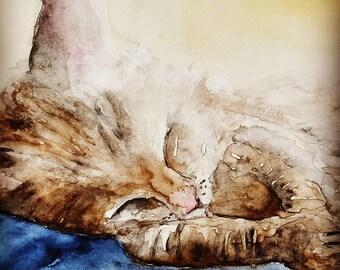 Sleeping Kitten Original 5x7 Black Matt included
