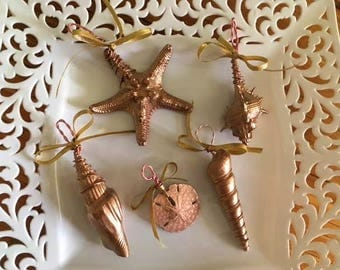 Hand Painted Seashell Ornaments, set of 5 in rose gold
