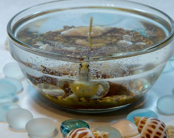 Ocean Gel Wax Candle - Turtle Candle Beach Scene with Tropical Island Scent. Nautical Theme Candle Can Be Made to Order.