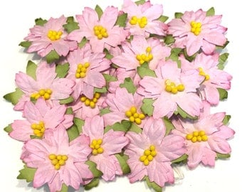 Light Pink Mulberry Paper Poinsettias Cb013