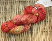Autumn Variegated Worsted Weight Wool Yarn (100% Peruvian Highland Wool) in reds, greens, oranges, and brown
