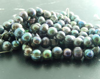 10 cultured black pearls