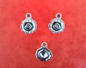 Set of 5 charms - silver T35