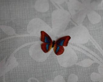 transparent Butterfly multicolored 1.6 x 1.2 cm, n77