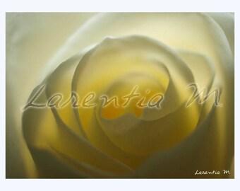 Photo 30X40cm White Rose in the light heart