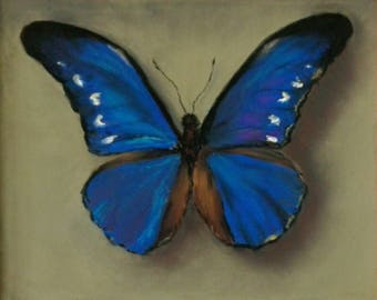 Original handmade soft pastel drawing, blue butterfly