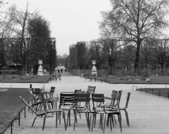 Meeting in the garden of the tuileries, Paris, December 2014