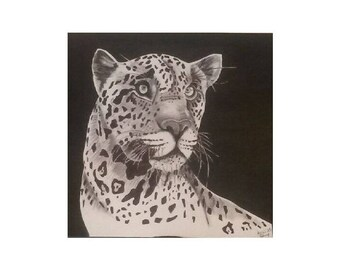 Ink drawing and its black and white spotted Panther
