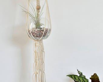 medium plant hanger