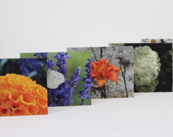Floral Photo Cards