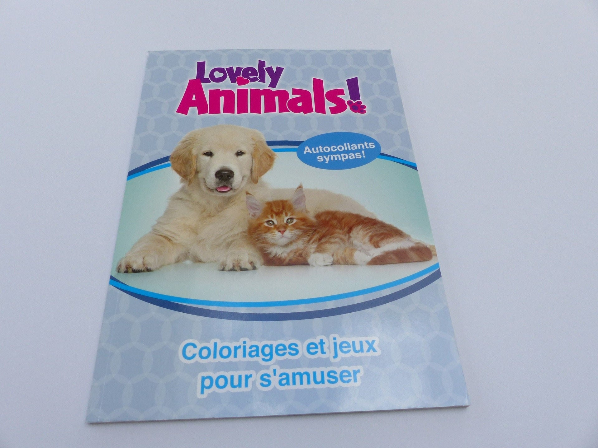 Détails livre d activités coloriage jeux et autocollants les animaux chien chat lapin tortue cheval lion souris