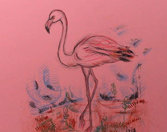 Flamingo - drawing on colored paper