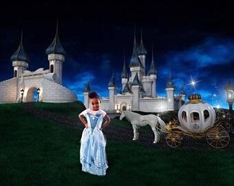 Cinderella Backdrop, Fantasy Castle Digital Backdrop, Cinderella Castle Background, Fairytale Castle Digital Backdrop, Cinderella Carriage