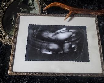 Hibernation, vintage framed photograph