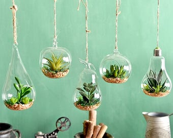 Simple Hanging Glass Vase, Hanging Terrarium, Air Plant Vase, Glass Vase, Home Decor,Office Decor, Air Planter,Gift Idea, Garden Tools