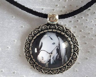 Black velvet collar and Medallion horse no. 1
