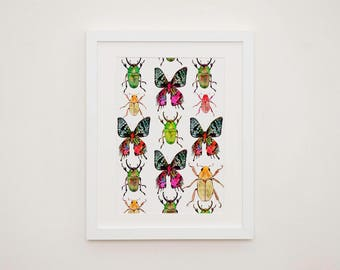 Beetles & Butterflies Print