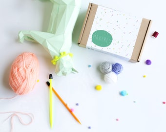 Makerly Craft Kit Subscription Box - One Month