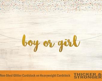 Boy or Girl Banner, Script Font - Gender Reveal Banner, Baby Shower Banner, Gender Reveal Decor, Baby Shower