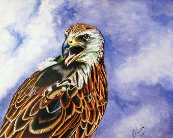 Limited Edition Giclee Print: The Assertive Red Kite #02/75 by Martin Romanovsky