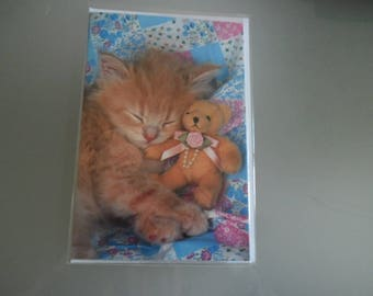 x 1 card double multicolored representing a kitten and her cub + envelope 17.3 x 11.5 cm