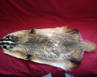 Real badger pelt