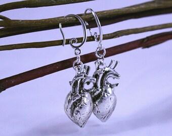 Earrings, Heart Earrings, Anatomical Heart Earrings, 3D  Anatomical Heart Earrings on Silver Plated Hooks