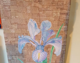 Decoupaged newspaper print canvas with hand drawn Iris using pencils