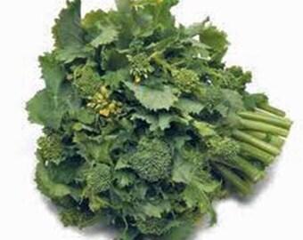 Broccoli raab, rapini, heirloom, organic, non gmo seeds, delicious a culinary delight