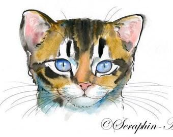 Tabby Kitten Original Watercolor Painting
