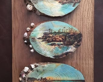 Seascapes on pine