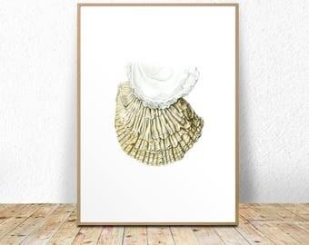 Seashell art print, seashell printable, seashell wall art, seashell wall decor, 11x14, A3, 8x10, A4, poster, wall decor, white, natural