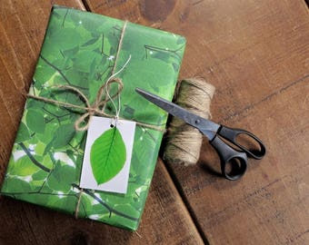 Beech Leaves Eco Wrapping Paper and Gift Tag